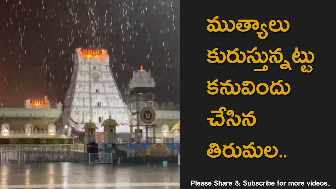 Beautiful View Of Tirumala Venkateswara Swamy Temple In Rain