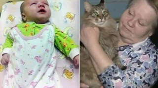 Stray Russian Cat Called Masha Saves Baby Boy Abandoned In The Cold By Keep Him Warm