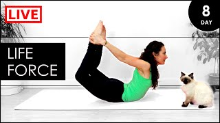 Yoga For BEGINNERS | Day 8