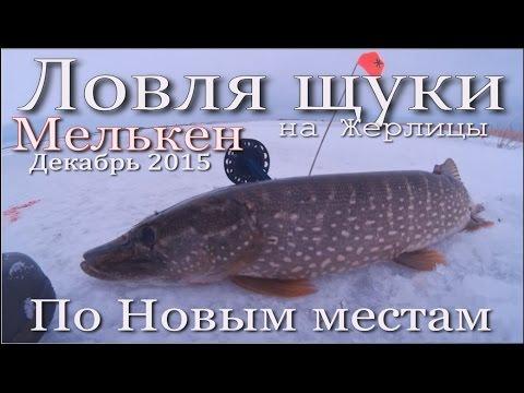 новый мелькен рыбалка 2016