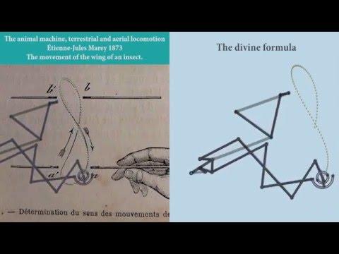 VARIPON :: Task 6 1a : The divine formula