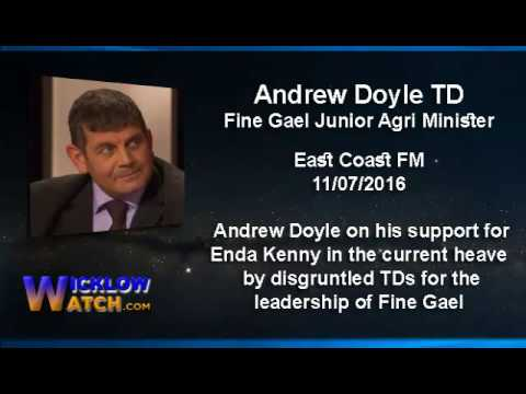 Andrew Doyle TD on the Fine Gael heave against Enda Kenny 11-07-2016