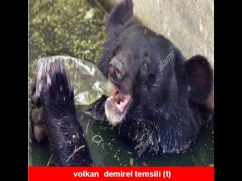 Fenerbahçe 9 - Başakşehir 10 Kupa Capsleri
