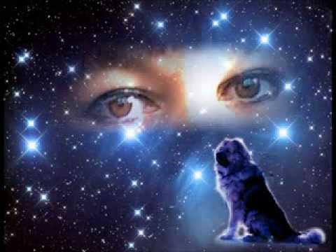 гончих псов созвездие фото