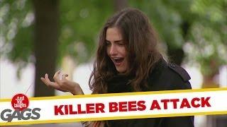 Attack of the Killer Beehive Prank