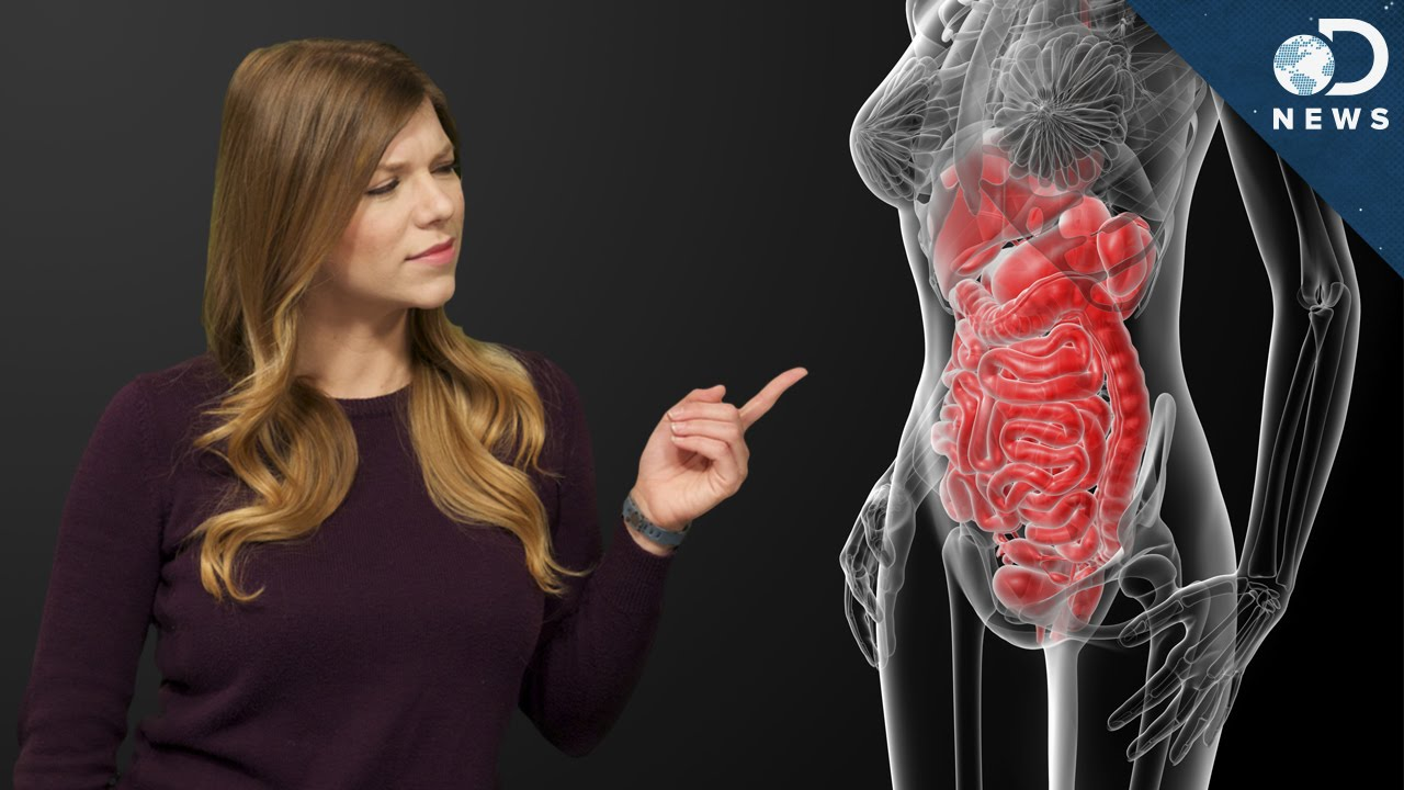 Do You Need To Clean Your Colon? - YouTube
