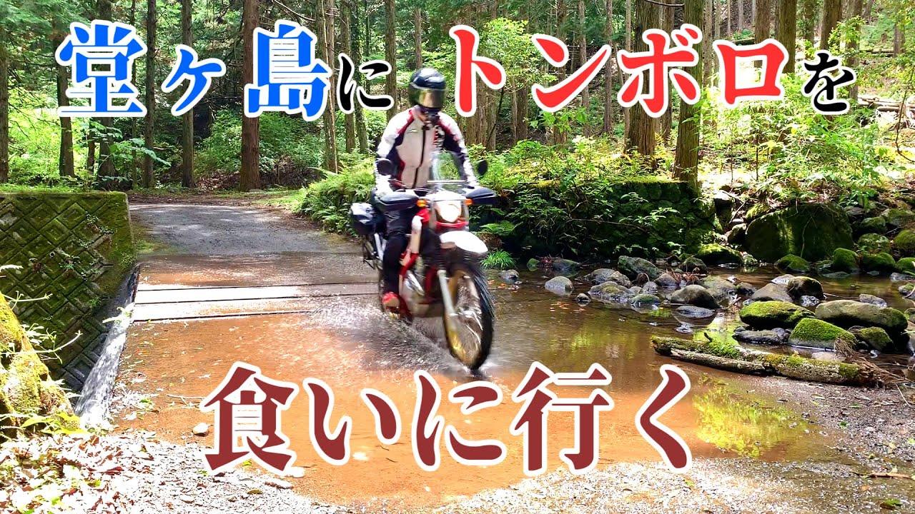 【モトブログ】達磨山林道を走り抜けて堂ヶ島のトンボロを食いに行く🥩【SEROW250】