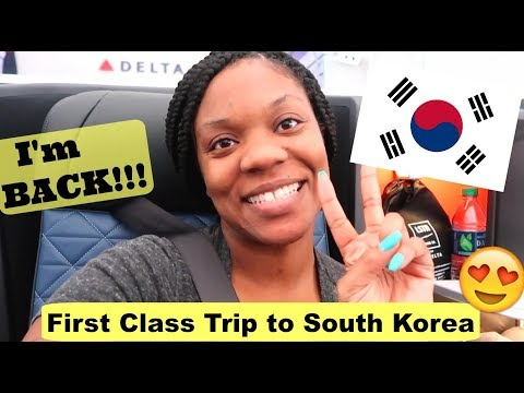 Guess who's back in Paradise! | South Korea Vlog 🇰🇷