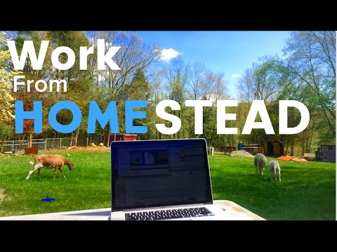 Make Money Online Without Leaving the Homestead