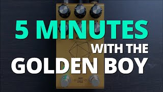 5 Minutes with the Jackson Audio Golden Boy - Pedal Demo