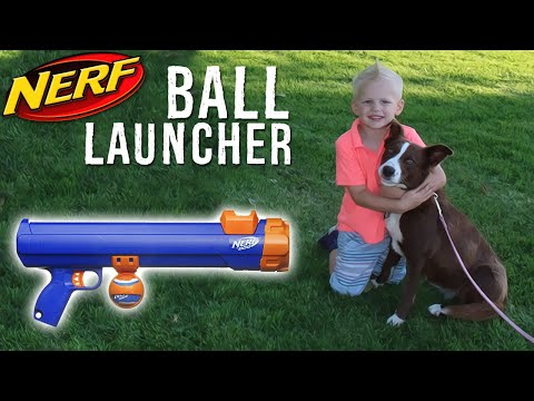 NERF at the PARK! Testing the Nerf Dog Ball Launcher