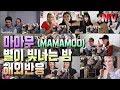 마마무 - 별이 빛나는 밤 M/V 해외반응 MAMAMOO - Starry Night reaction