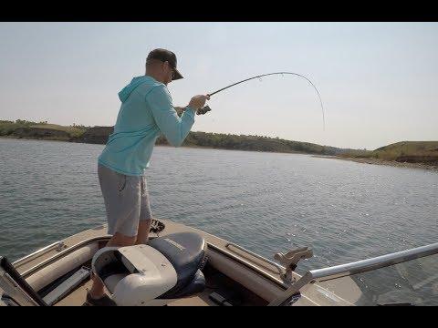 Smallmouth Bass Smackdown - Lake Sakakawea, ND