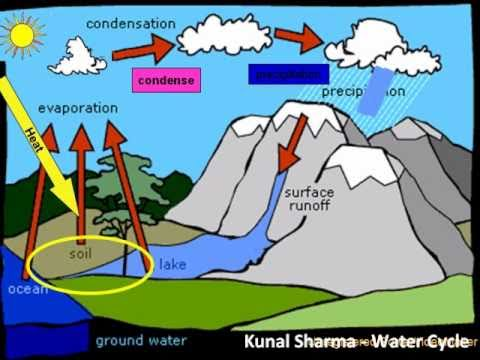 The WATER CYCLE - An Animation of Water going through its Cycle ...