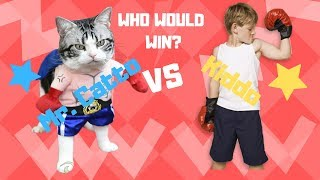 who would win? cat vs kiddo