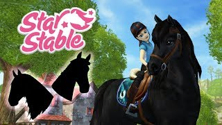 Pazze compere con Sely Star Stable