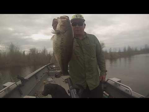 Northern California Bass Fishing