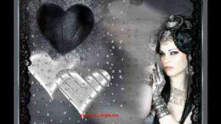 Tamer Hosny Allah Yebarekly Feek (lyrics+translation)