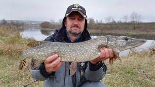 За ЩУКОЙ на Пьяну Поиск хищника на малой реке в начале ноября
