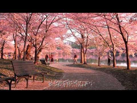 Fuyu no uta - 冬の歌