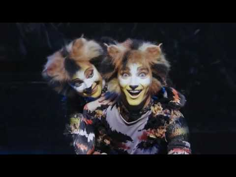 Cats Musical Trailer Eastbourne
