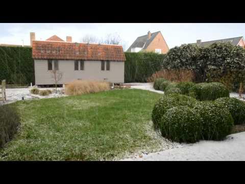 a bit white in Oostkamp, Belgium on  Jan 16, 2016