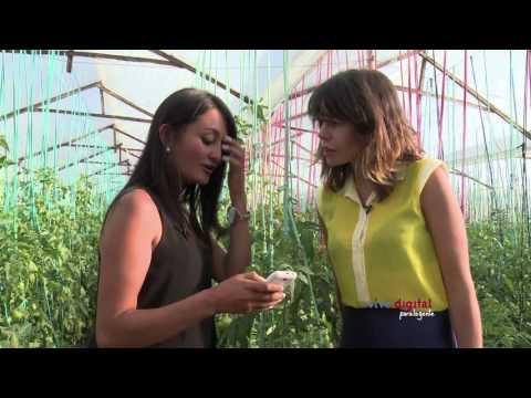 El agro y las TIC se complementan – c19