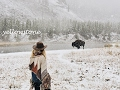 Yellowstone - US Natinoal Parks Tour / #tetefedertravel