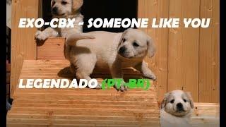 EXO-CBX - Someone Like You (OST) [Legendado PT-BR]