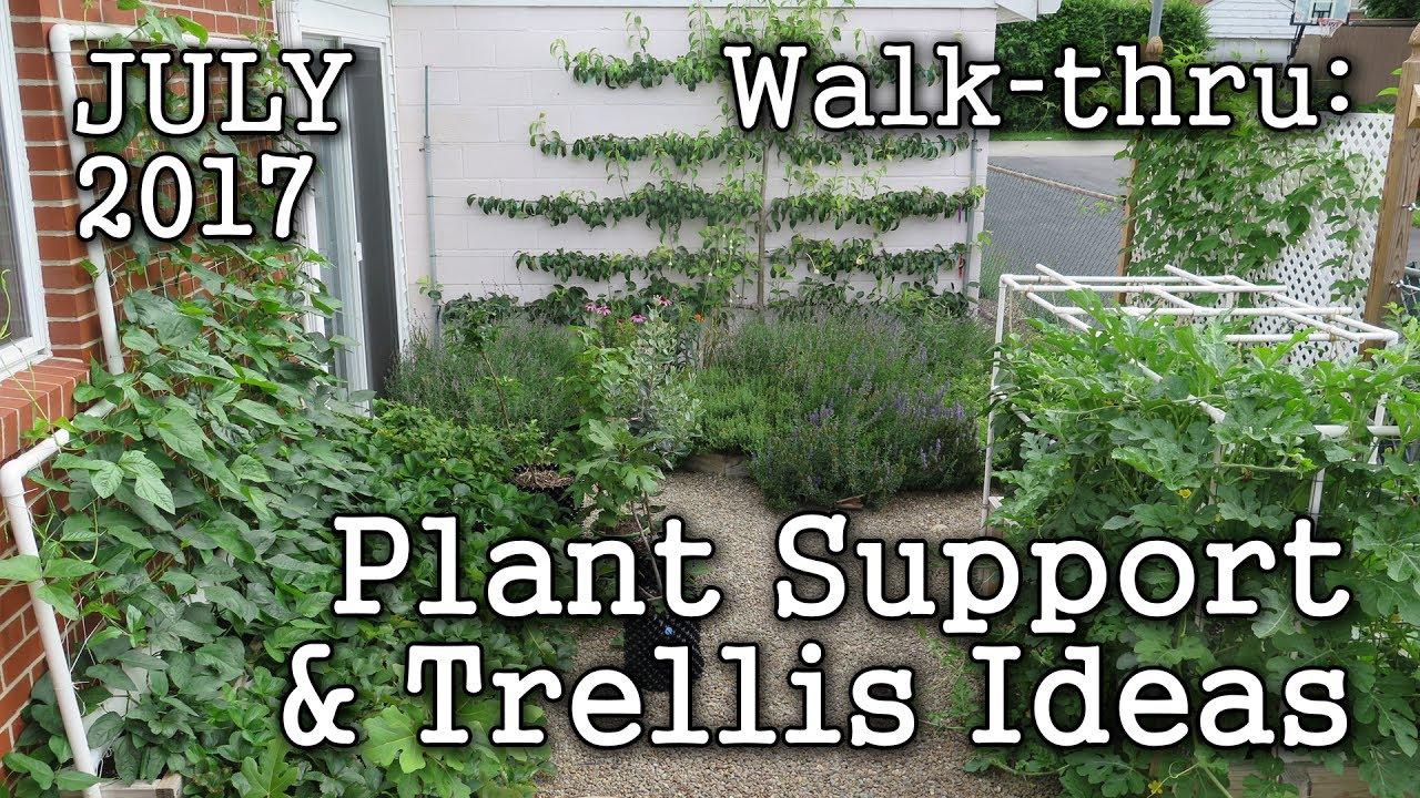 Trellis Plant Support Ideas + 2017 July Urban Garden, Edible ...