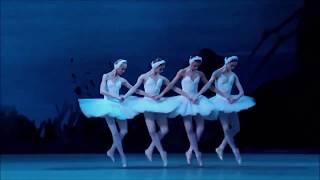 El lago de los cisnes 💜 - Stafaband