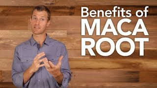5 Amazing Benefits Of Maca For Men, Benefits Of Maca Root
