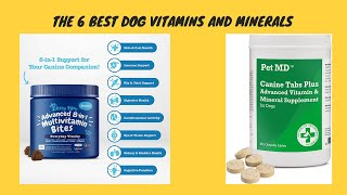The 6 Best Dog Vitamins And Minerals