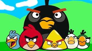 Angry birds RI0!