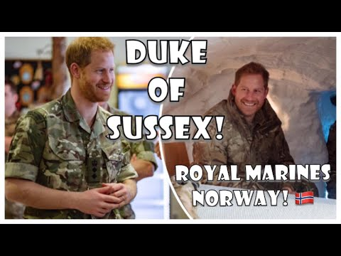 Prince Harry Visits Royal Marines Base NORWAY On Valentines Day For Exercise Clockwork