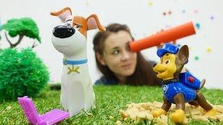 Видео про Макса: игрушки Тайная жизнь животных, Щенячий Патруль. Макс потерял ноут!