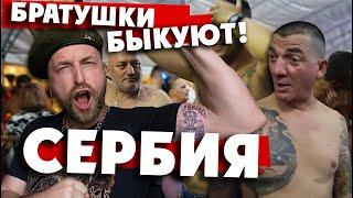 """""""СЕРБИЯ ГУЛЯЕТ!"""": лайфхак как не надо вести себя на фестивале в Гуче."""