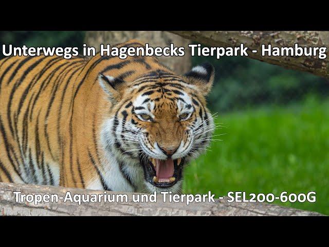 Unterwegs im Tierpark Hagenbeck in Hamburg - Impressionen aus dem Tropen-Aquarium und dem Tierpark