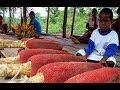 Mengenal Lebih Jauh Manfaat Buah Merah Papua Asli Indonesia