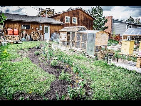 Ferme Urbaine - Notre Jardin Bio de 1000m2