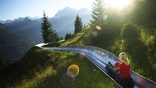 Long Toboggan Run High in the Swiss Alps