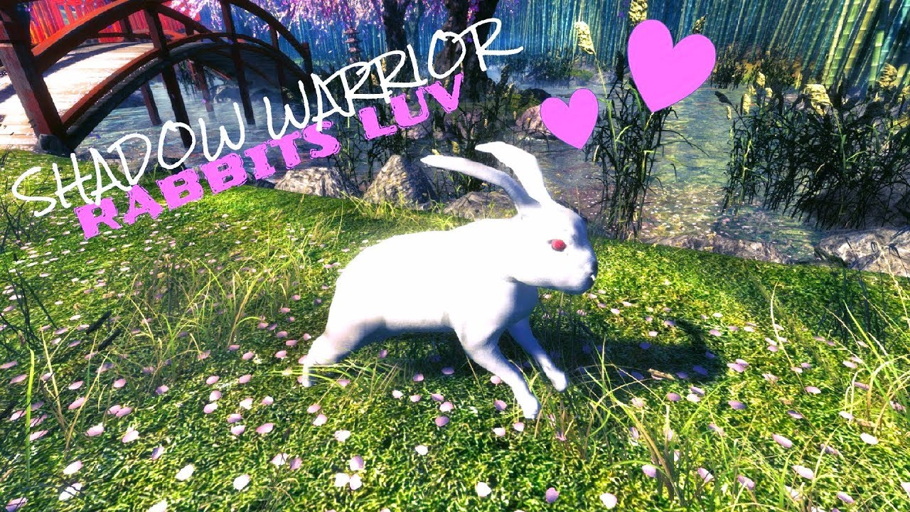 Download SHADOW WARRIOR // Beep Beep - snuggle bunny // Valentine's day - RABBITS LUV (-18)