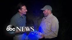 Hunting for Scorpions in Arizona