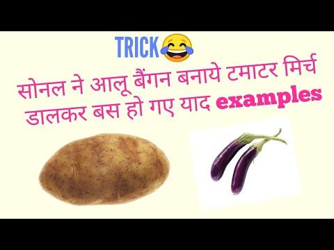 Trick MORPHOLOGY OF FLOWERING PLANTS in hindi part 4