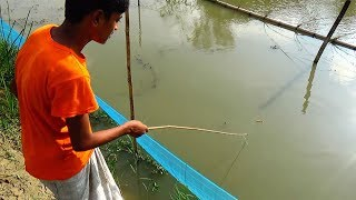 Live Fishing Video | मछली पकड़ने का वीडियो (Part-82)