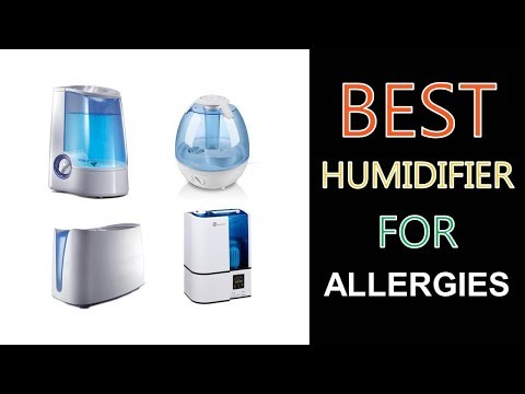 Best Humidifier for Allergies 2017