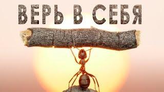 ВЕРЬ В СЕБЯ и ДЕЙСТВУЙ! Мотивация на УСПЕХ / Александр Чуйко