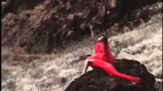 Desert Rose Video