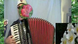 Colonel Bogey March -The Bridge on the River Kwai - accordion