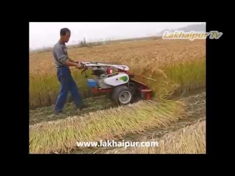 धान, गेहूं कटाई करने की मशीन (Rice, Wheat Ripper Machine)